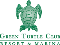 logo_turtle