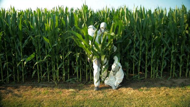 GMO OMG w/The Gift
