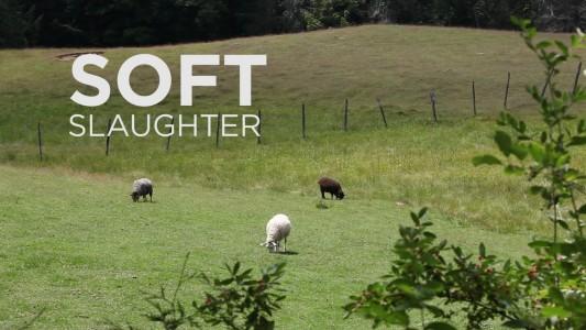 rsz_soft_slaughter
