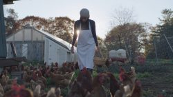 heritage-farm-to-table-in-rockland-maine-with-chef-melissa-kelly-of-primo