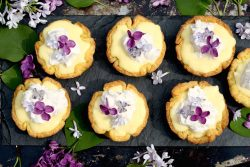 lilac-coconut-cream-tarts