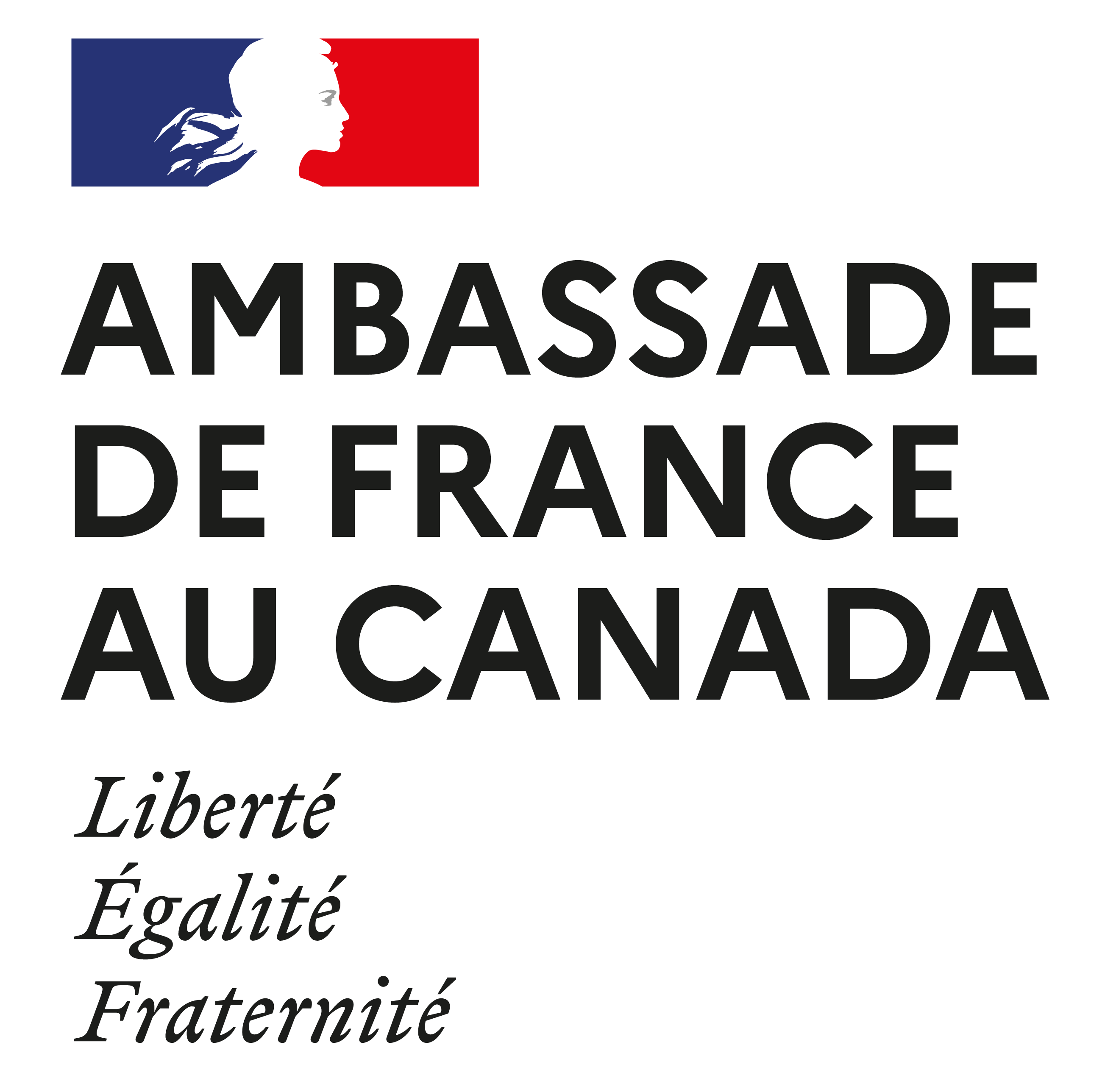 The Embassy of France logo