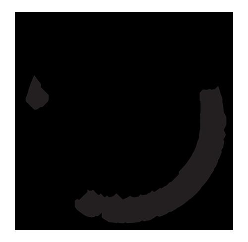 Avondale Sky logo